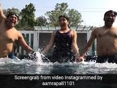 आम्रपाली दुबे संग पूल में गोते लगाने के बाद यूं पार्टी करते नजर आए रवि किशन, देखें video