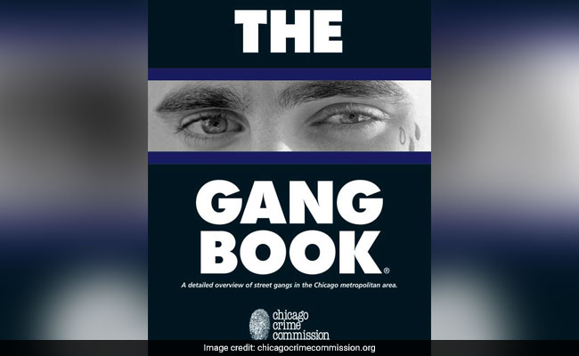 chicago gang book