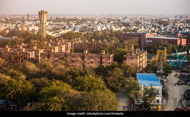 'Tree Wall' In Delhi To Act As Shield Against Dust Storms