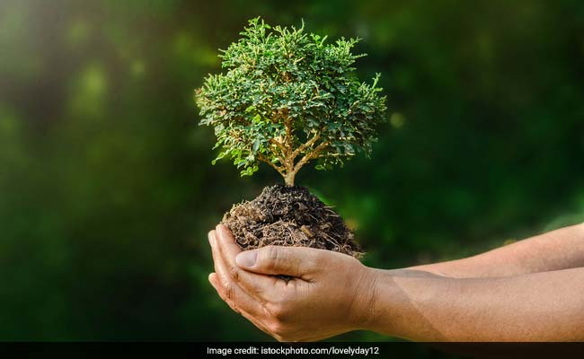 विश्व पर्यावरण दिवस पर पीएम नरेंद्र मोदी और राष्ट्रपति कोविंद ने दिया ये संदेश
