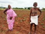 किसानों की आय नहीं बल्कि कृषि कर्ज माफी ग्रामीण मांग में सुधार की वजह: रिपोर्ट