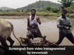 """How Do We Beat This?"": Internet On Telangana Duo's Viral Kiki Challenge"