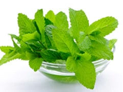 Amazing Health Benefits Of Mint Leaves You Must Know