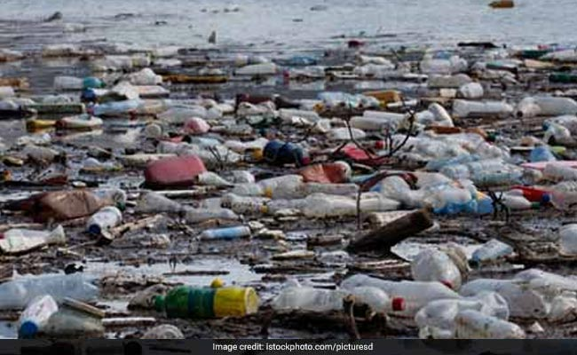 Tamil Nadu To Ban Use Of Plastic Items From 2019