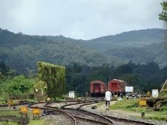 खुदकुशी के इरादे से पटरियों के बीच नवजात संग लेट गई महिला, ट्रेन गुजरने के बाद जानिये क्या हुआ...