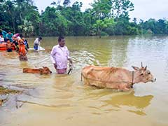 Highlights: People In Relief Camps As Rains Hit North-East, Kerala