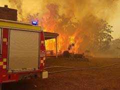 Aircraft Crash Kills Waterbomber Pilot Fighting Australian Wildfires