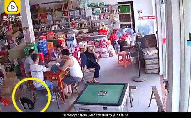 VIDEO: डकैती करने के लिए निकाली बंदूक तो हुआ ऐसा हादसा, आपको भी आ जाएगी हंसी
