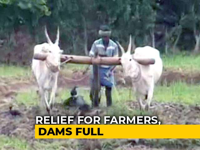 Video : Monsoon This Year Brings Relief For Farmers In Karnataka's Mandya