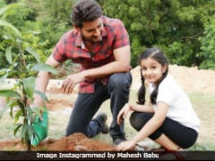 Mahesh Babu's Daughter Sitara Is Happy To Assist Him In The 'Green Challenge'