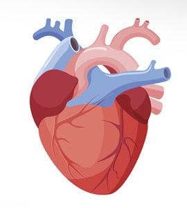World Heart Day 2018: दिल को हमेशा Happy रखने के लिए अपनाएं ये 5 ट्रिक्स
