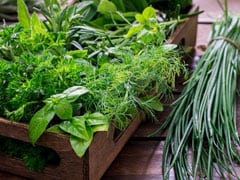 5 Fresh Herbs You Should Add To Your Grocery List
