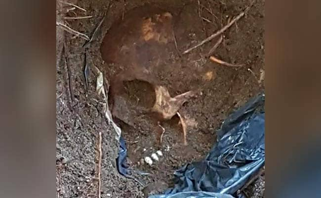 Mass Grave With Over 160 Skulls Could Be 'Biggest In Mexico, Even World'