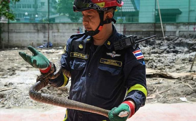 In This Bangkok Locality, It's Not Fire Keeping Firefighters Busy, But...