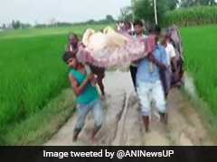 No Roads, Pregnant Woman Carried On Cot To Hospital In UP's Etawah