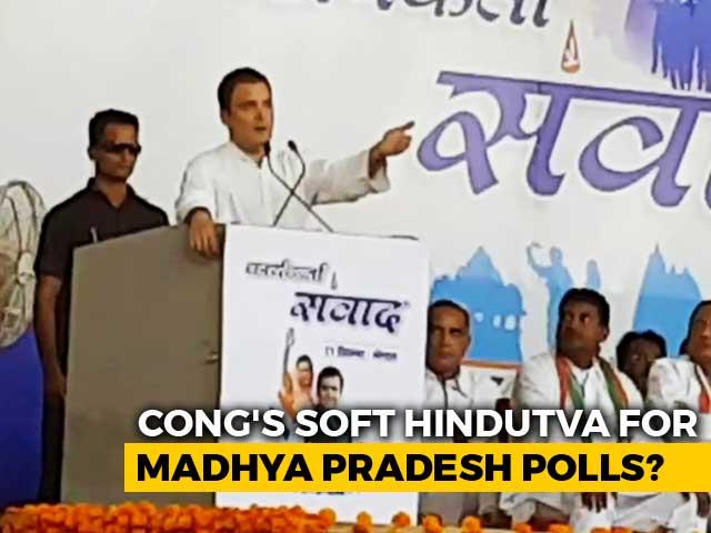 Will Rahul Gandhi's Soft Hindutva Work?