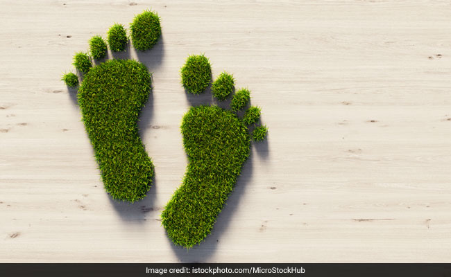 6 Ways To Reduce Your Carbon Footprint