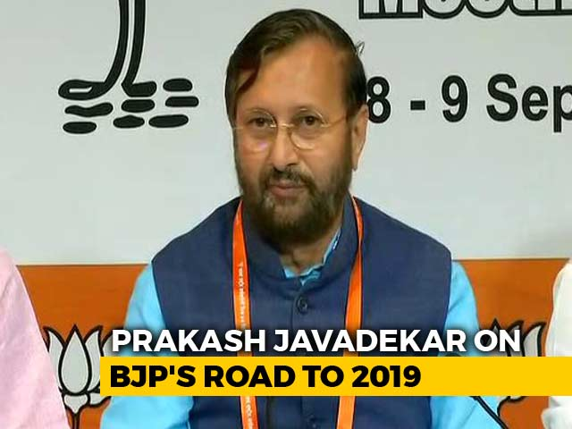 "Video : PM Modi's Win In 2019 ""Guaranteed"", Says BJP At Key Meet"