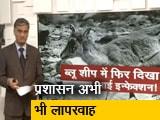 Video : ब्लू शीप में फिर दिखा आई इन्फेक्शन!