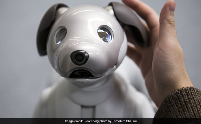 Aibo The Robot Dog Will Melt Your Heart With Mechanical Precision
