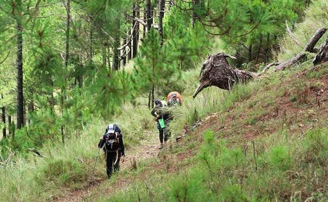 3 Trekkers Missing In Himachal Pradesh's Lahaul-Spiti, Search On