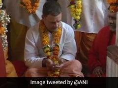 नरेंद्र मोदी की हत्या करने की साजिश रचने वालों को जेल में डाला गया तो राहुल गांधी 'फ्रीडम ऑफ स्पीच' की बात करते हैं : अमित शाह