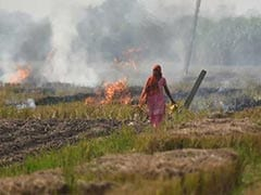 Don't Blame Our Farmers For Your Air Pollution, Haryana Tells Delhi
