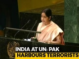 "Video : ""Pakistan Sheltered Osama Bin Laden"": Sushma Swaraj's Full Speech At UN"