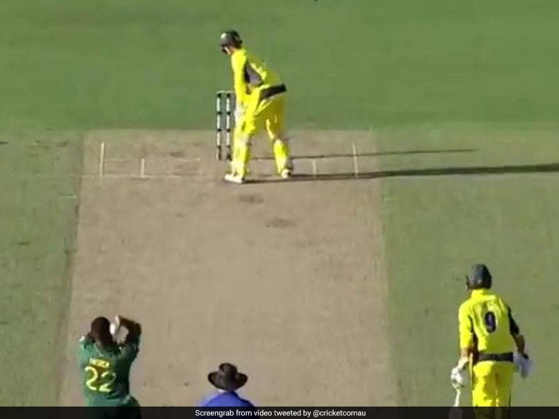 Watch: George Bailey's Unusual Batting Stance Leaves Twitter In Splits