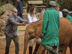 Melania Trump Shoved By Playful Baby Elephant In Kenya