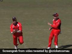फील्डर ने पकड़ा ऐसा कैच बल्लेबाज भी देखकर हो गया हैरान, वायरल हुआ VIDEO