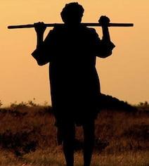 महाराष्ट्र में औसतन 6 किसान रोज कर रहे आत्महत्या, विपक्ष ने सरकार पर साधा निशाना