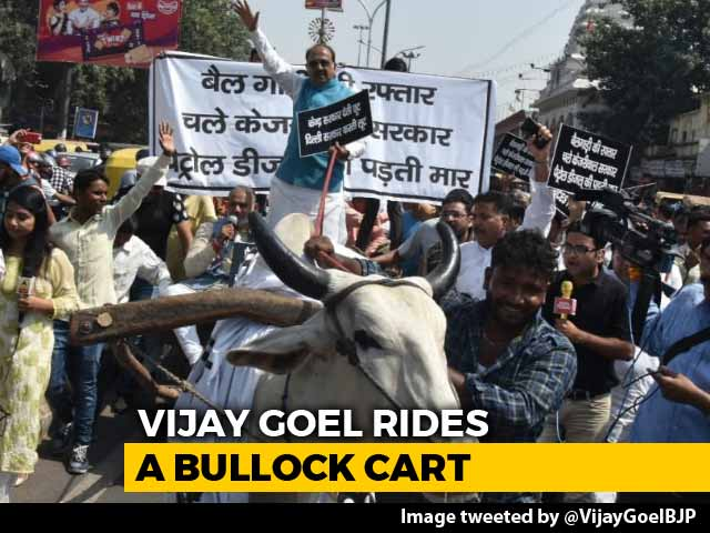 Video : With Bullock Cart Ride, Minister Confronts Arvind Kejriwal On Fuel Price