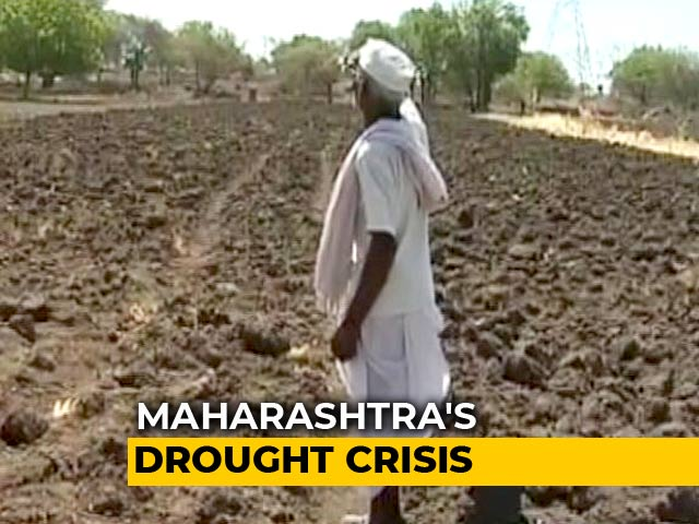 "Video : ""No Water To Drink"": Nearly Half Of Maharashtra Declared Drought-Hit"