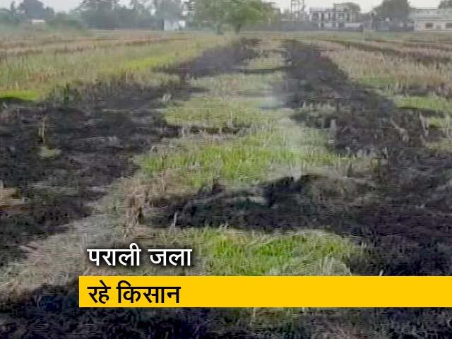 Video : पंजाब में फिर पराली जला रहे हैं किसान