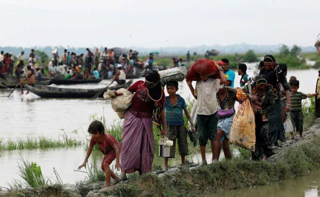 More Than 250,000 Rohingya Refugees In Bangladesh Get First ID Cards: UN