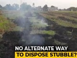 Video : No Manpower Or Machinery, Will Burn Crop Residue, Say Punjab Farmers