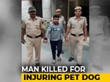 Video : Teen Arrested For Stabbing Man After Tempo Brushes Past Pet Dog In Delhi