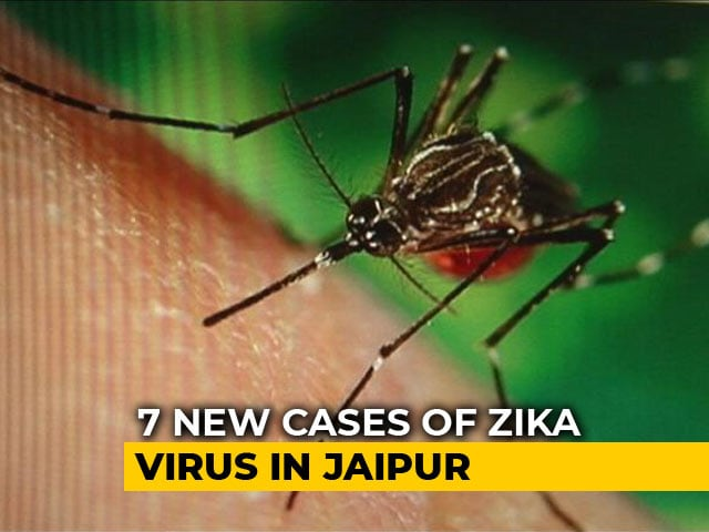 Video : 22 Test Positive For Zika In Jaipur, Bihar On Alert, PM Modi Seeks Report