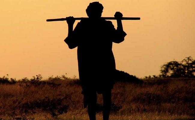 Maharashtra Farmer Under Rs 27 Lakh Debt Allegedly Commits Suicide