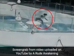 भूखी Sharks के बीच जा गिरी ये महिला, वायरल हुआ संघर्ष का खतरनाक VIDEO