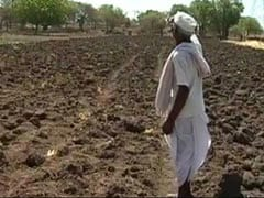 """No Water To Drink"": Nearly Half Of Maharashtra Declared Drought-Hit"