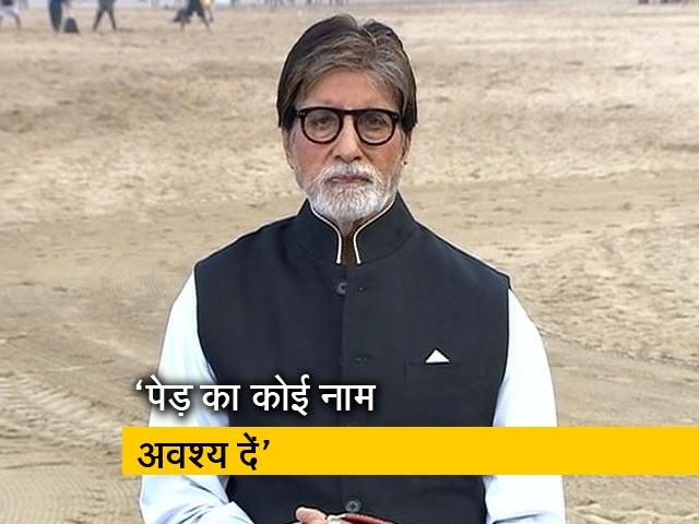 Videos : NDTV Cleanathon : जब भी पेड़ लगाएं उसे एक नाम जरूर दें- अमिताभ बच्चन