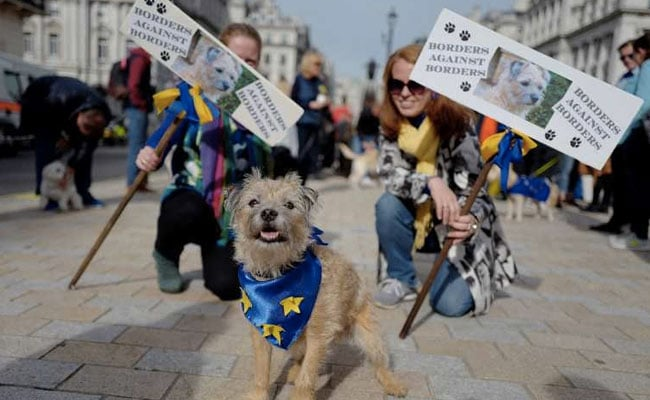 Hundreds Of Dogs Hound Theresa May For 'Wooferendum' On Brexit