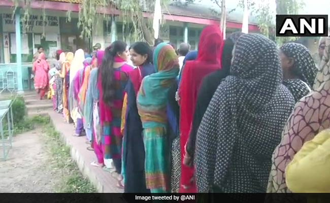 Municipal Polls Highlights: BJP Wins In Jammu, Loses In Other Districts
