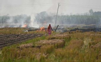 Delhi Holds Its Breath As Burning Farms Herald Pollution Season