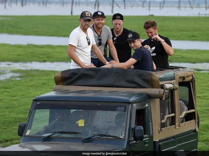 England Players Enjoy Jungle Safari On Rest Day. See Pics