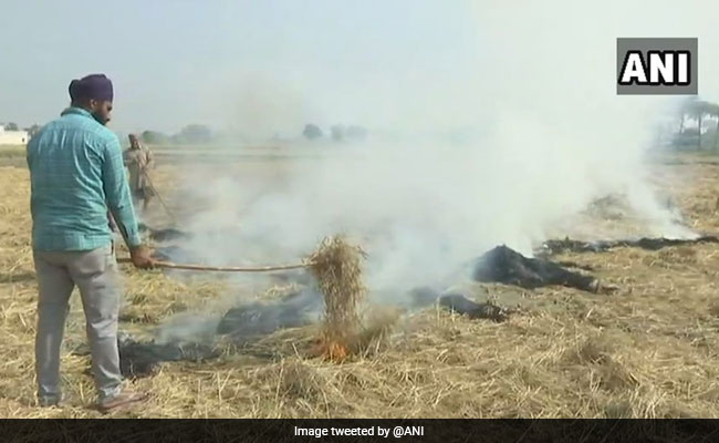 'Sympathies With Farmers, But Don't Burn Crop Residue': Amarinder Singh
