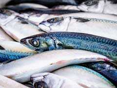 In Patna, Ban On Sale Of Fish For 15 Days Over Reports Of Excess Formalin