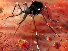 10 Facts You Need To Know About Zika Virus In India